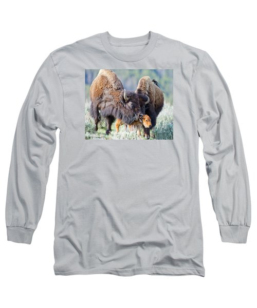 Pride And Joy Long Sleeve T-Shirt by CR  Courson