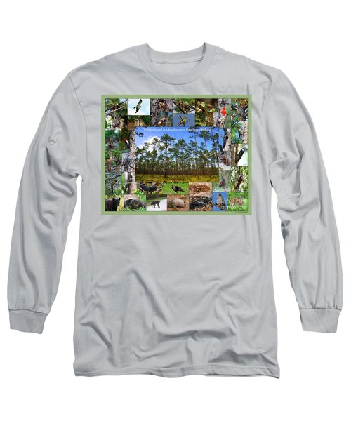 Southeastern Pine Forest Wildlife Poster Long Sleeve T-Shirt
