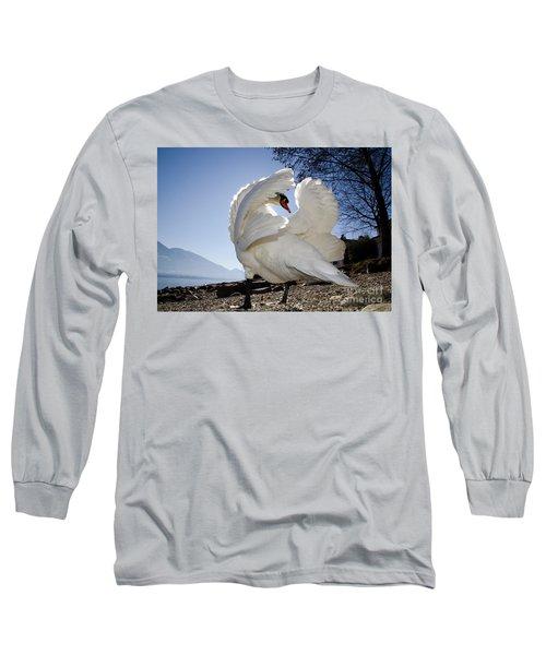 Swan In Backlight Long Sleeve T-Shirt