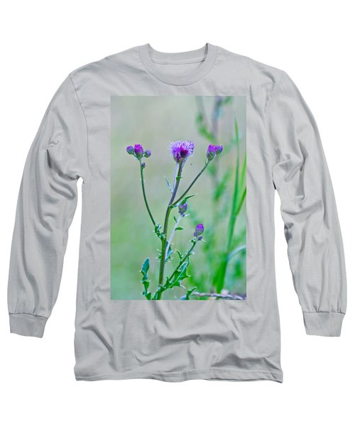 Thistledown Pastel Passion Long Sleeve T-Shirt