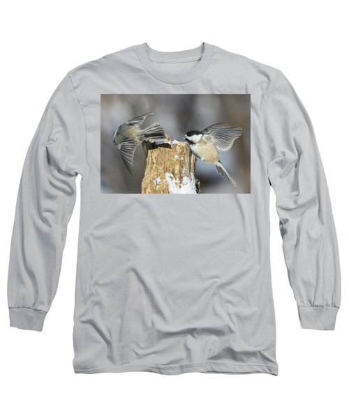 Long Sleeve T-Shirt featuring the photograph Black-capped Chickadee In Winter by Mircea Costina Photography