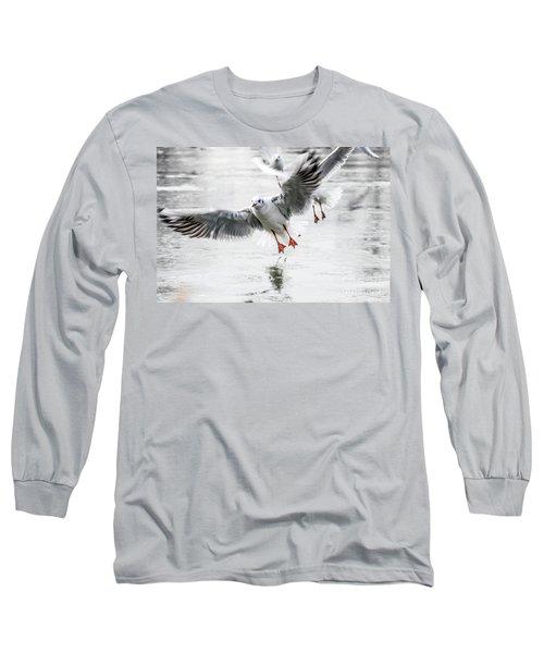Flying Seagulls Long Sleeve T-Shirt