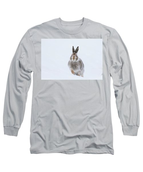Long Sleeve T-Shirt featuring the photograph Mountain Hare - Scotland by Karen Van Der Zijden