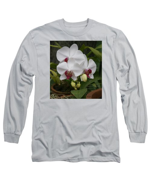 Long Sleeve T-Shirt featuring the photograph Orchid by Christian Zesewitz