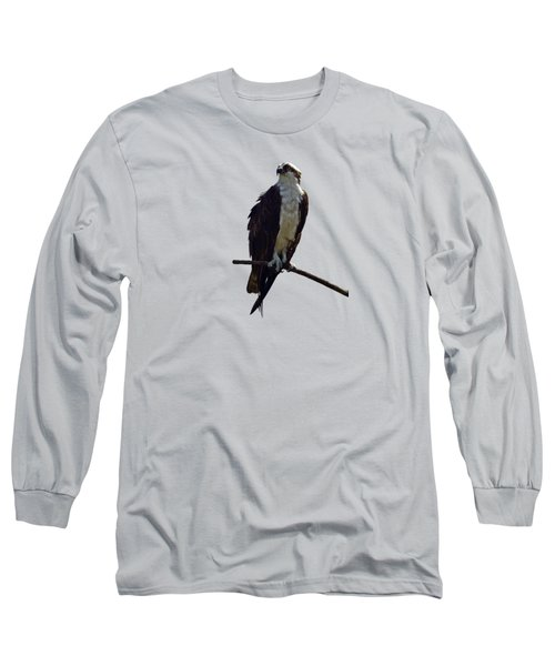 Osprey Long Sleeve T-Shirt by Deborah Good