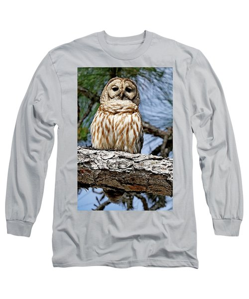 Owl In A Tree Long Sleeve T-Shirt