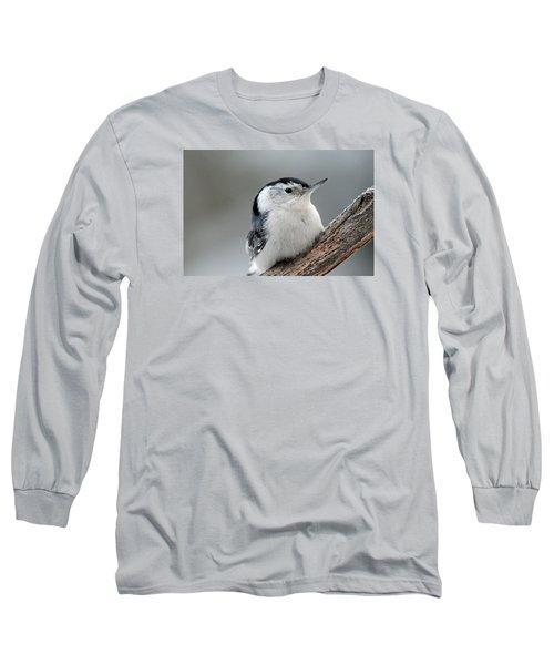Sitta Carolinensis Long Sleeve T-Shirt by Mike Martin