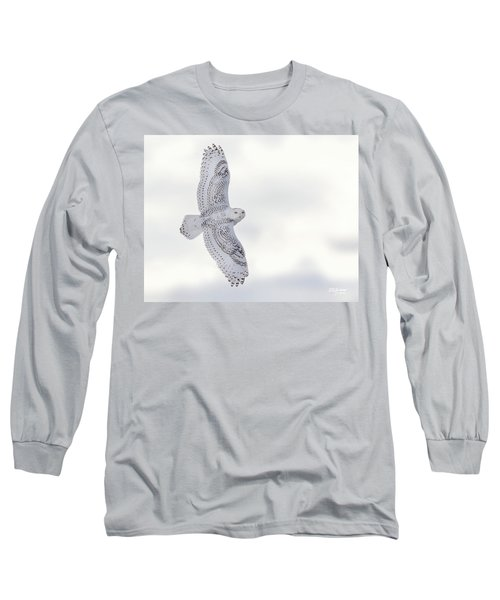 Snowy Flyby Long Sleeve T-Shirt