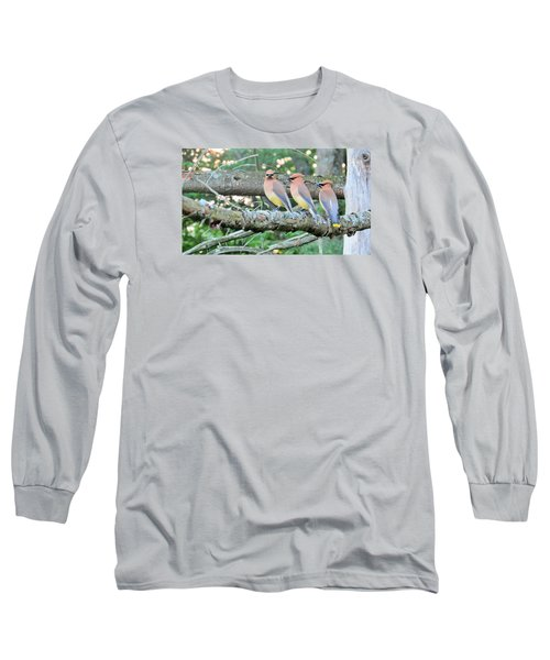 Three In A Row Long Sleeve T-Shirt by Jeanette Oberholtzer