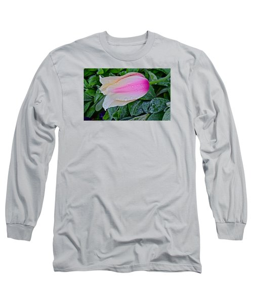 2015 Spring At Olbrich Gardens Lily Tulip In The Rain Long Sleeve T-Shirt