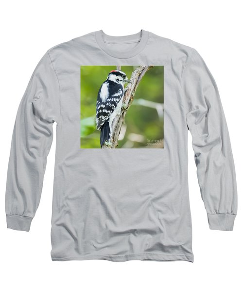 Long Sleeve T-Shirt featuring the photograph Downy Woodpecker  by Ricky L Jones