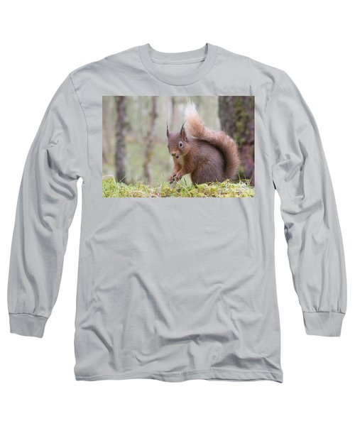 Red Squirrel - Scottish Highlands #8 Long Sleeve T-Shirt