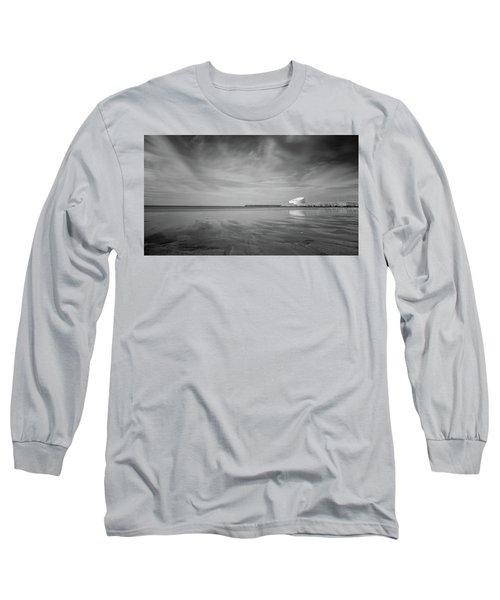 A Beach And A Bunch Of Birds Long Sleeve T-Shirt