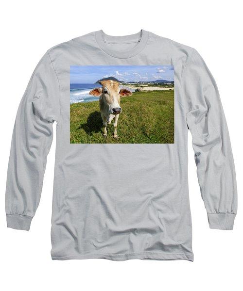 A Cow At The Beach Long Sleeve T-Shirt