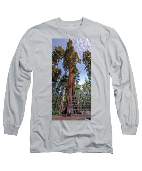 A Poem Lovely As A Tree.   Long Sleeve T-Shirt by Phil Abrams