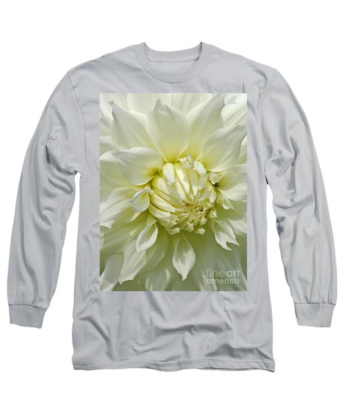 A Secret Visitor Long Sleeve T-Shirt by Cindy Manero