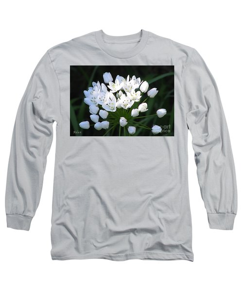 A Spray Of Wild Onions Long Sleeve T-Shirt by Felipe Adan Lerma