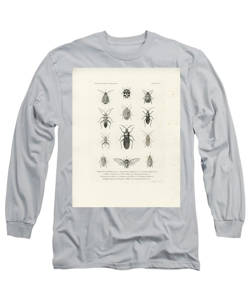 African Bugs And Insects Long Sleeve T-Shirt