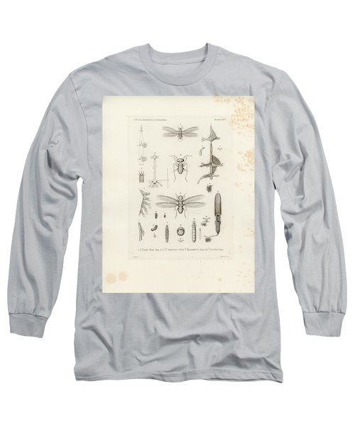 African Termites And Their Anatomy Long Sleeve T-Shirt by W Wagenschieber