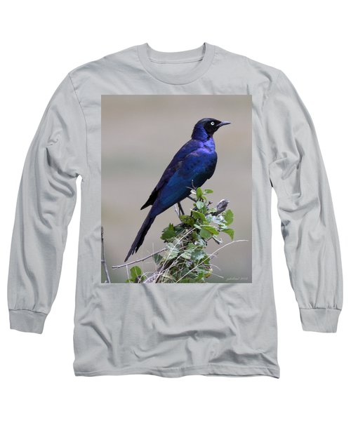 African White Eye Starling Long Sleeve T-Shirt