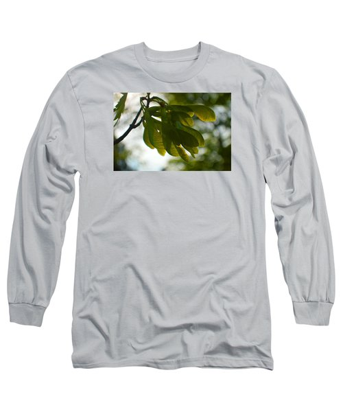 Air And Breeze Long Sleeve T-Shirt by Tina M Wenger