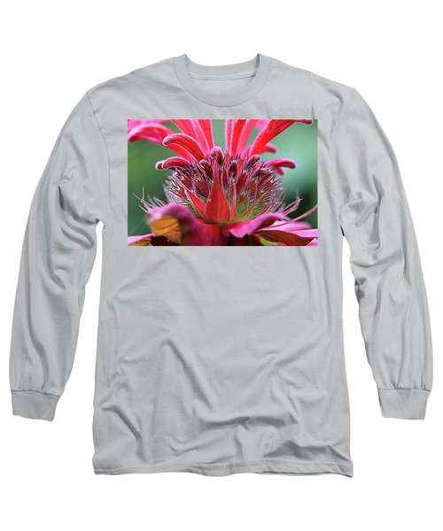 Alien Plant Life Long Sleeve T-Shirt by David Stasiak