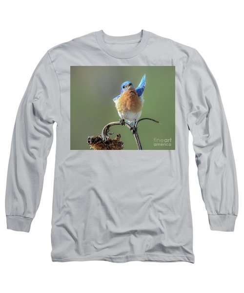 All In Favor Long Sleeve T-Shirt by Amy Porter