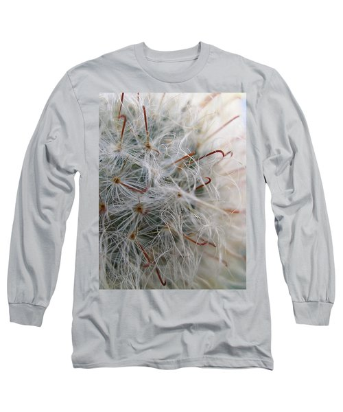Long Sleeve T-Shirt featuring the photograph Allium Sativum by Jolanta Anna Karolska