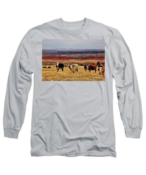 Almost Heaven Long Sleeve T-Shirt