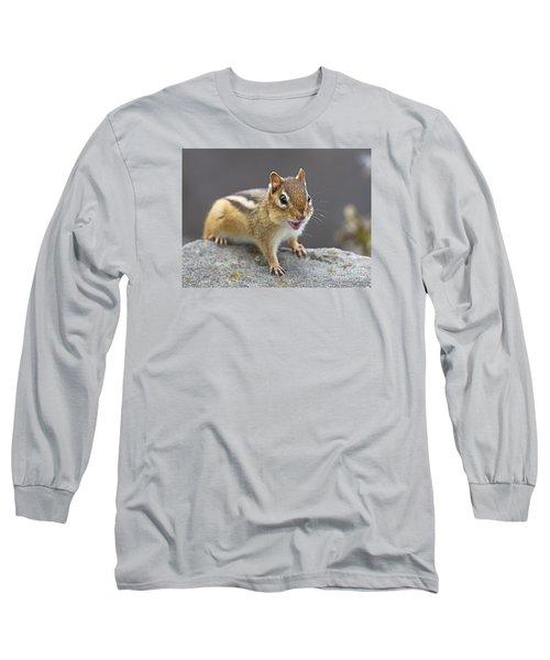 Alvinnn... Long Sleeve T-Shirt