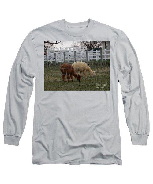An Evening Graze Long Sleeve T-Shirt