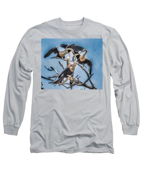 Anhinga Feeding Time Long Sleeve T-Shirt