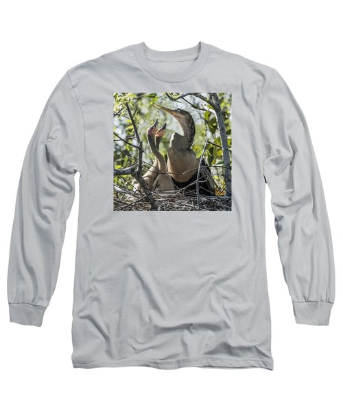 Anhinga In Nest With Her Chicks Long Sleeve T-Shirt