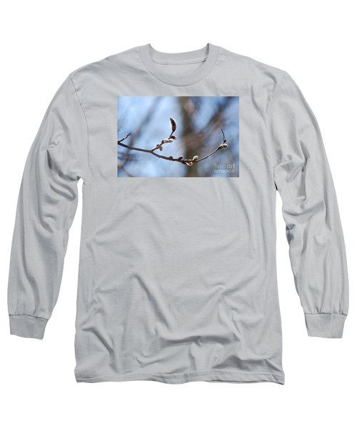 Long Sleeve T-Shirt featuring the photograph Aspen Catkins 20120314_33a by Tina Hopkins