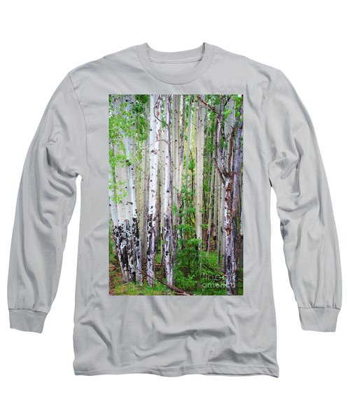 Aspen Grove In The White Mountains Long Sleeve T-Shirt