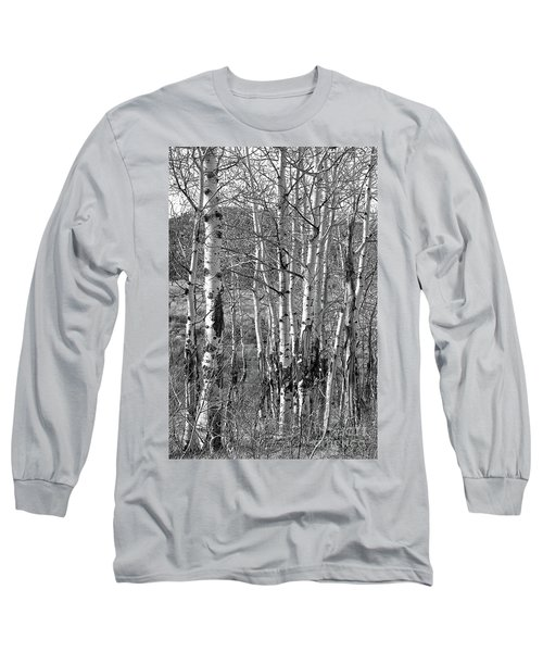 Aspens Long Sleeve T-Shirt by Kathy Russell