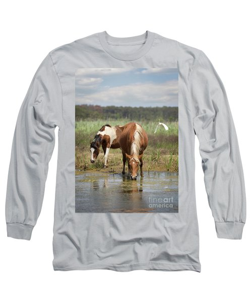 Assateague Pony Pair Long Sleeve T-Shirt