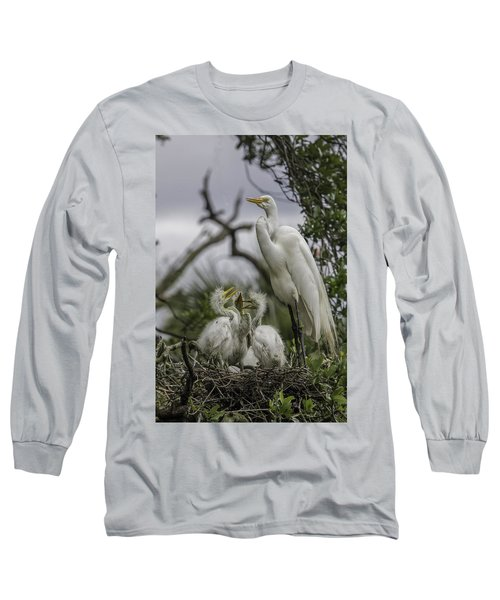 Babies In The Nest Long Sleeve T-Shirt