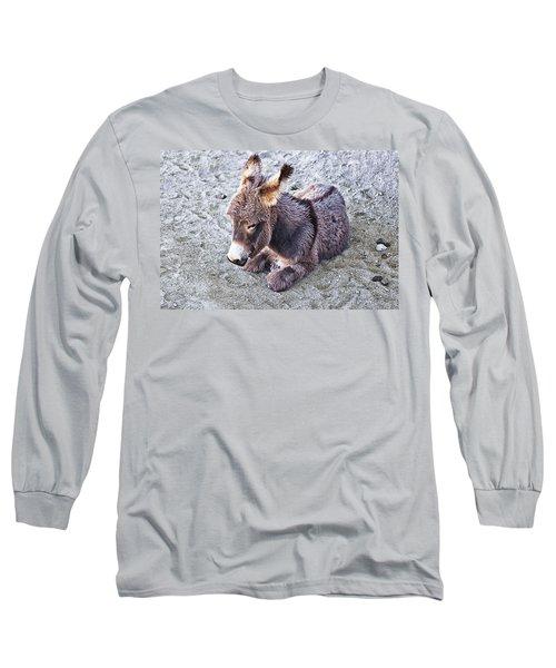 Baby Burro Long Sleeve T-Shirt