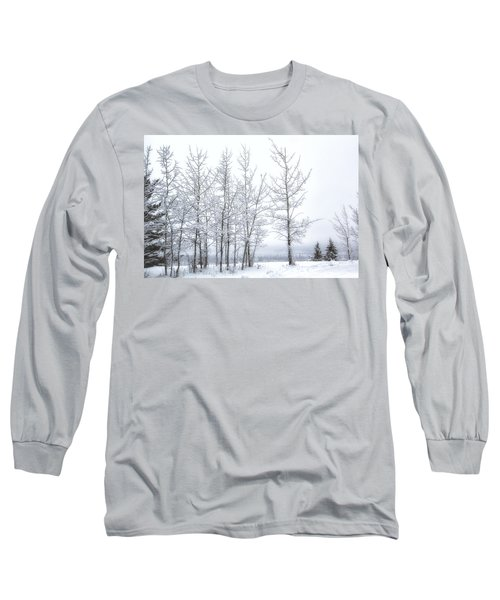 Bare Trees In Winter Long Sleeve T-Shirt