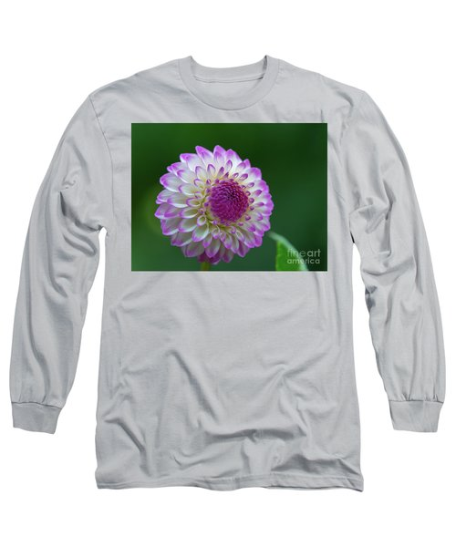 Beautiful Dahlia 2 Long Sleeve T-Shirt