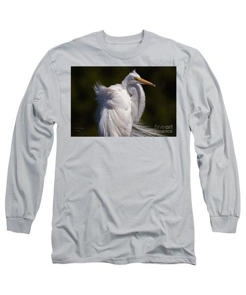 Beauty In The Wind Long Sleeve T-Shirt