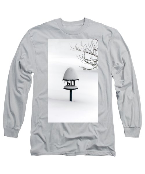 Bird Feeder In Snow Long Sleeve T-Shirt