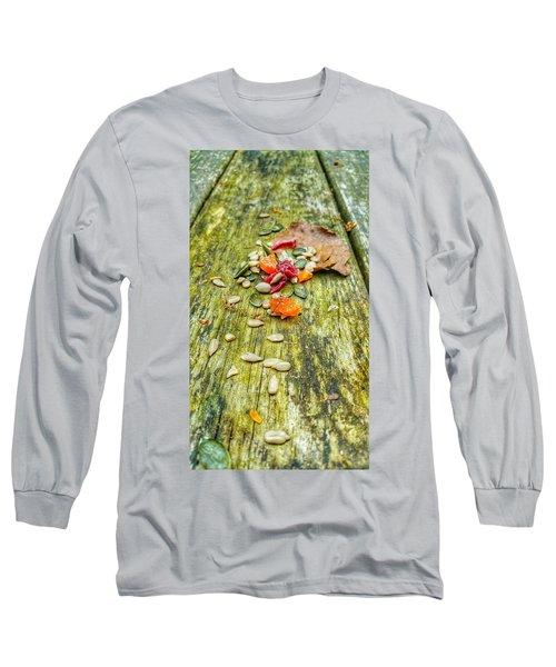 Bird Food Long Sleeve T-Shirt by Isabella F Abbie Shores FRSA