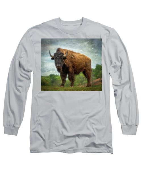 Long Sleeve T-Shirt featuring the photograph Bison 9 by Joye Ardyn Durham