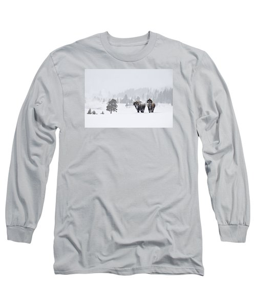 Bison In The Snow Long Sleeve T-Shirt by Gary Lengyel