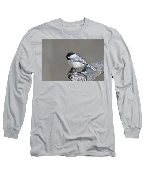 Long Sleeve T-Shirt featuring the photograph Black Capped Chickadee 1128 by Michael Peychich