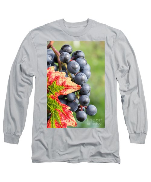Black Grapes On The Vine Long Sleeve T-Shirt