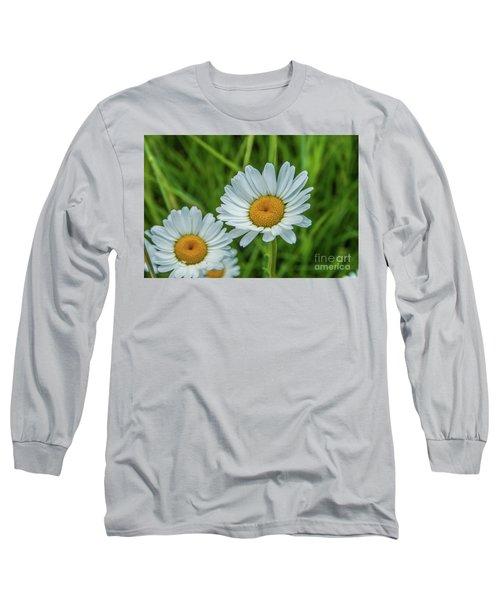 Black-headed Daisy's Long Sleeve T-Shirt