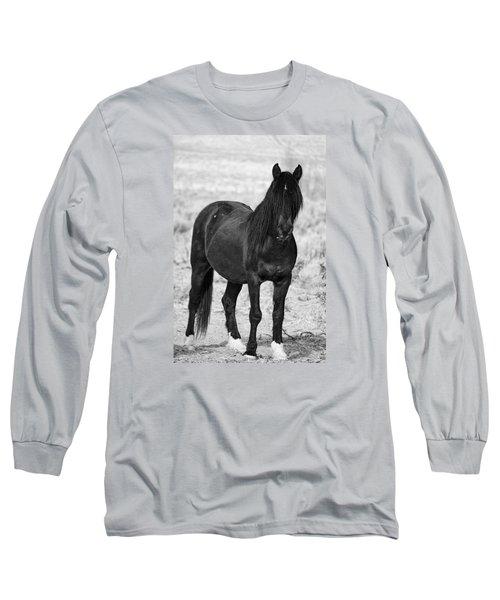 Black Wild Mustang Stallion Long Sleeve T-Shirt